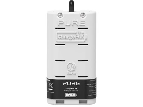 PURE CHARGE PAK B1 (gamme D2)