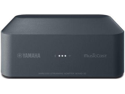 YAMAHA MusicCast WXAD-10
